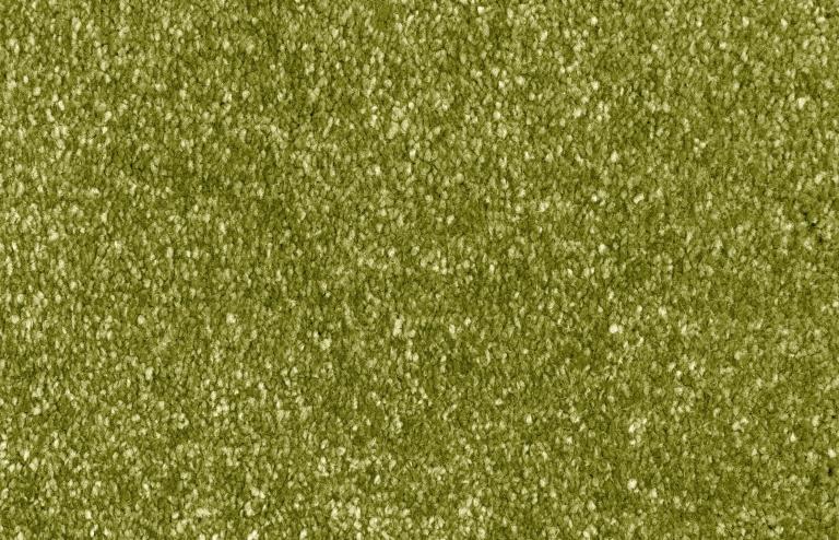 313 Lime